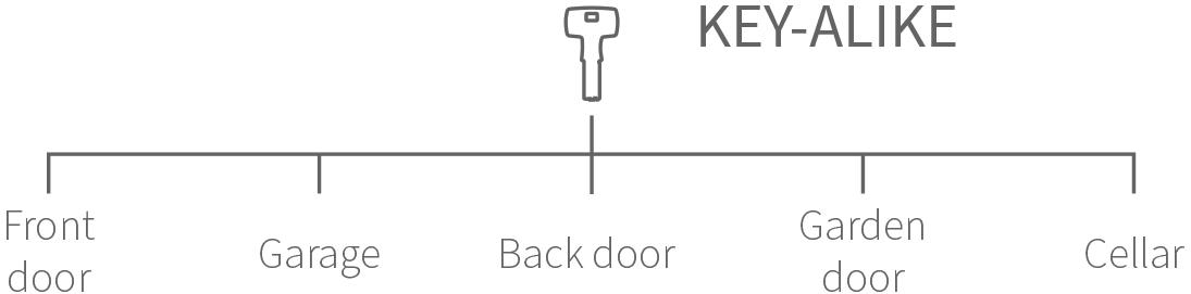 Key-alike